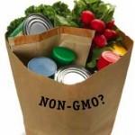 BagofNon-GMOGroceries